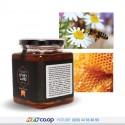 Mật Ong Hoa Xuyến Chi Honeyland - 2 Hũ x 500g